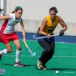 Womems Hockey Bermuda, February 22 2015-36