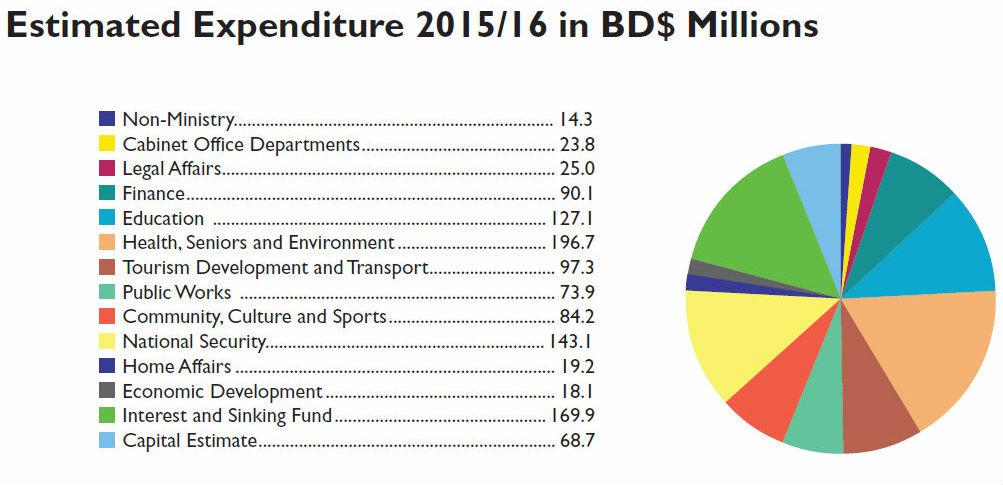 bermuda-budget-2015-table-viii-1