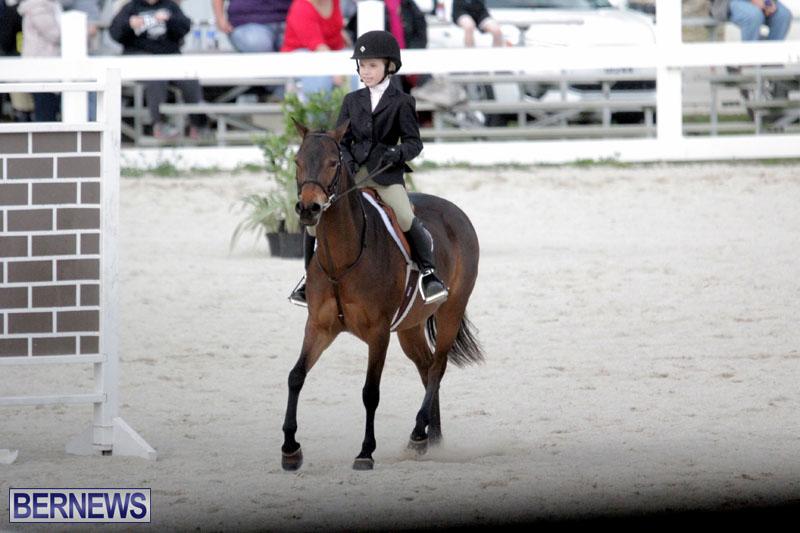 equestrian-2015-Feb-2-1
