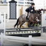 equestrian 2015 Feb 2 (10)