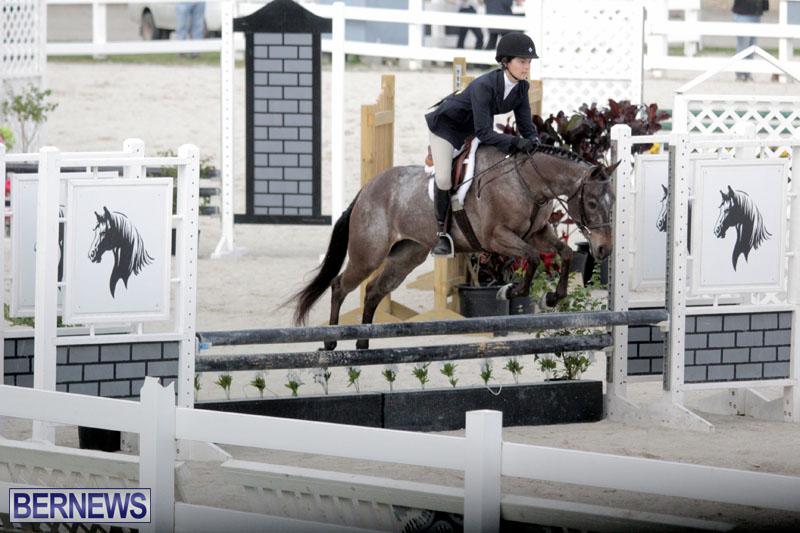 equestrian-2015-Feb-2-10