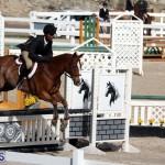 equestrian 2015 Feb 2 (16)