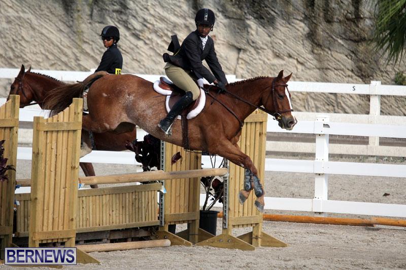equestrian-2015-Feb-2-17