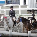 equestrian 2015 Feb 2 (2)
