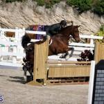 equestrian 2015 Feb 2 (20)