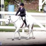 equestrian 2015 Feb 2 (3)
