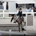 equestrian 2015 Feb 2 (9)