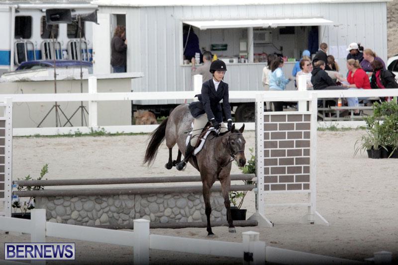 equestrian-2015-Feb-2-9