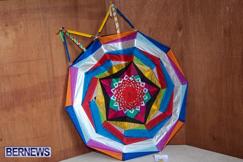 2013-ag-show-kites-bda-4