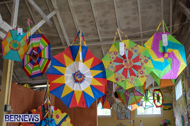 2013-ag-show-kites-bda-7