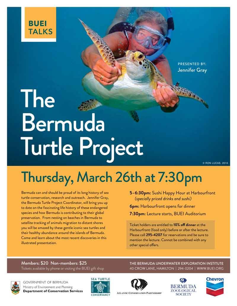 BDA-Turtle-Presentation-3-26-15