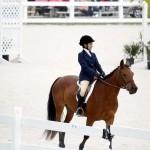 BHPA Spring Horse Jumping Mar 19 (1)
