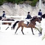 BHPA Spring Horse Jumping Mar 19 (10)