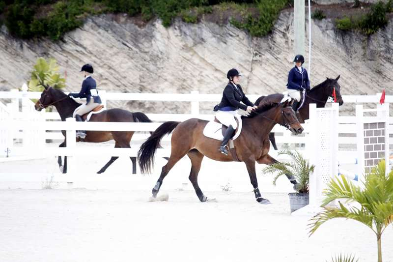 BHPA-Spring-Horse-Jumping-Mar-19-10