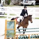 BHPA Spring Horse Jumping Mar 19 (11)