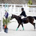BHPA Spring Horse Jumping Mar 19 (14)