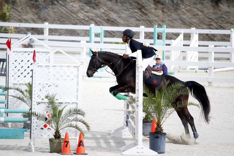 BHPA-Spring-Horse-Jumping-Mar-19-15