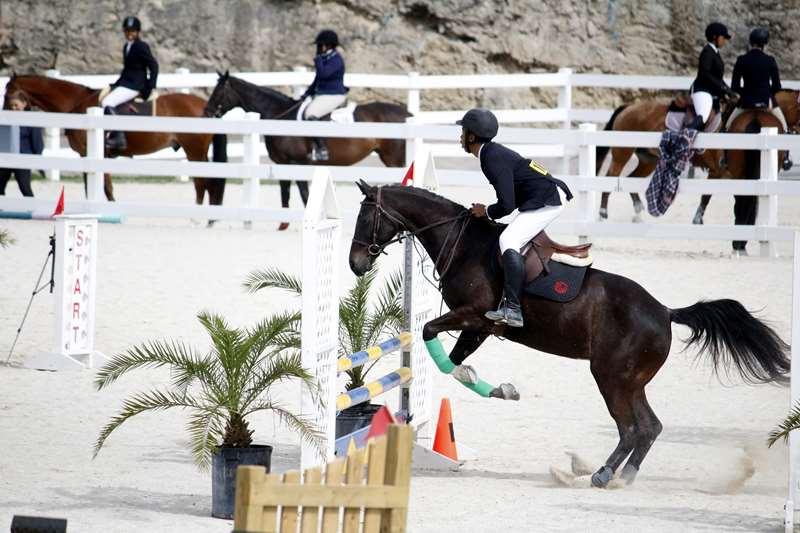 BHPA-Spring-Horse-Jumping-Mar-19-16