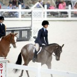 BHPA Spring Horse Jumping Mar 19 (2)