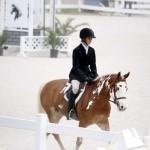 BHPA Spring Horse Jumping Mar 19 (3)
