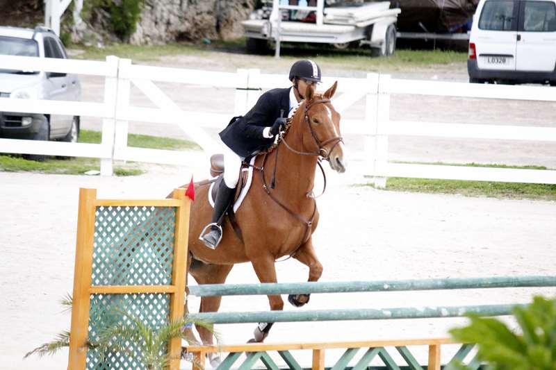 BHPA-Spring-Horse-Jumping-Mar-19-4