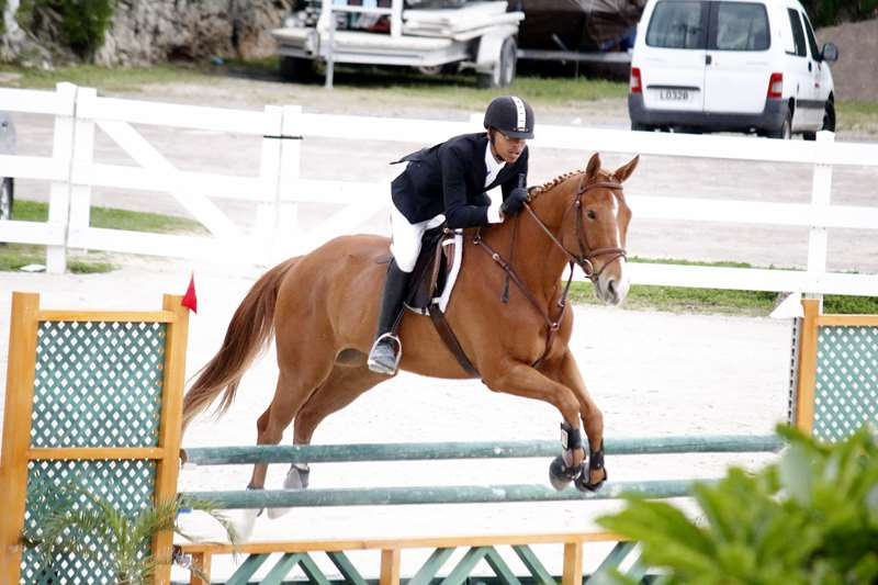 BHPA-Spring-Horse-Jumping-Mar-19-5
