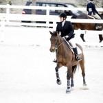 BHPA Spring Horse Jumping Mar 19 (7)