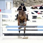 BHPA Spring Horse Jumping Mar 19 (8)