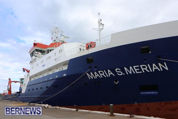 Maria S. Merian (3)