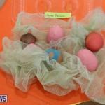 Warwick Pre School Spring Fair Bermuda, March 26 2015-80
