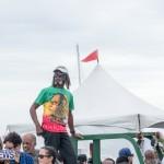 bermuda-karting-dockyard-race-march-2015-93