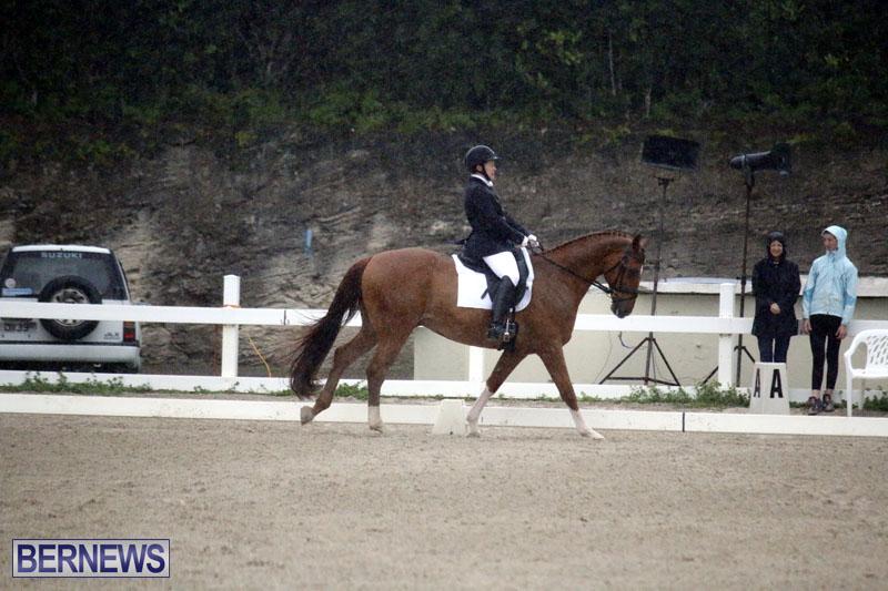 equestrian-6mar2015-10