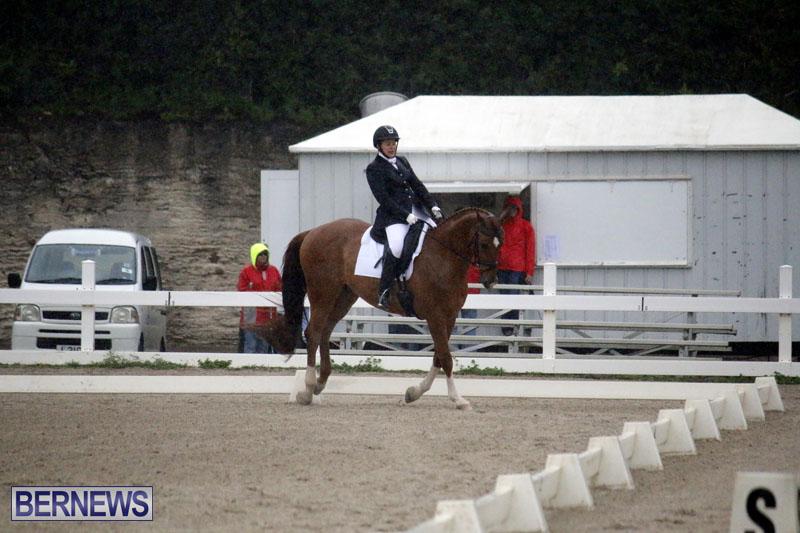 equestrian-6mar2015-11