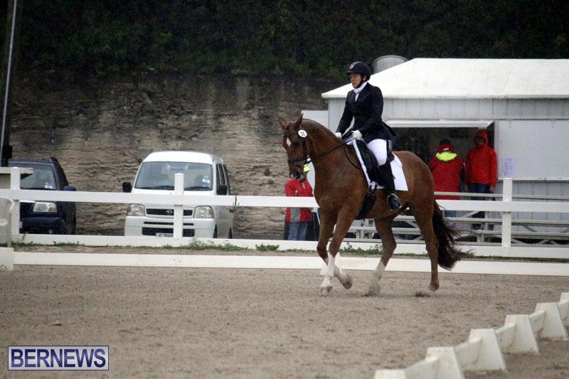 equestrian-6mar2015-12