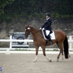 equestrian 6mar2015 (16)