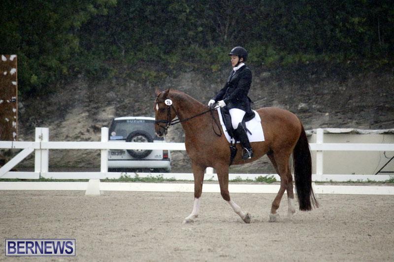 equestrian-6mar2015-16