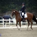 equestrian 6mar2015 (17)