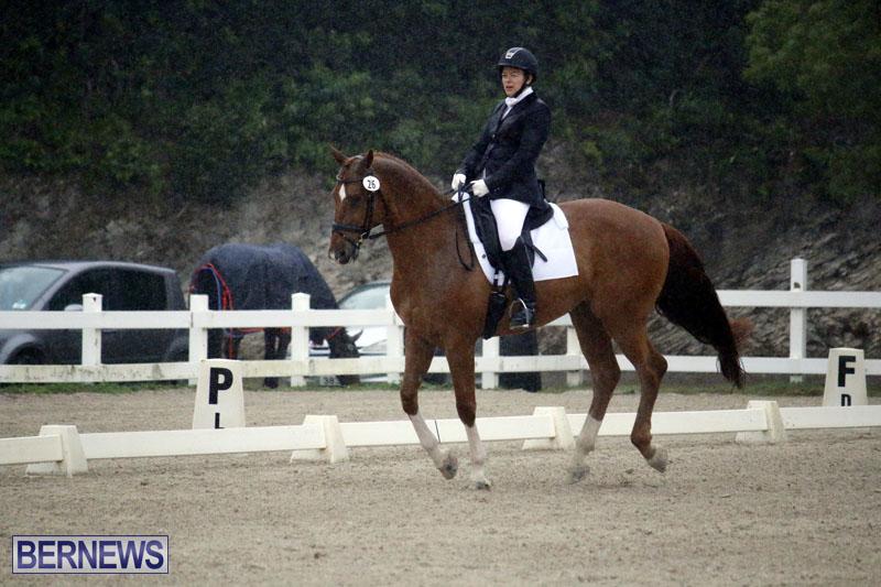 equestrian-6mar2015-17