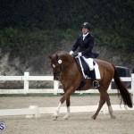 equestrian 6mar2015 (18)
