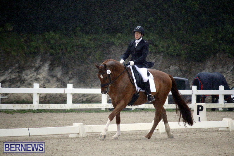 equestrian-6mar2015-18