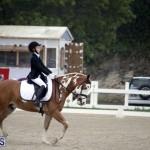 equestrian 6mar2015 (4)