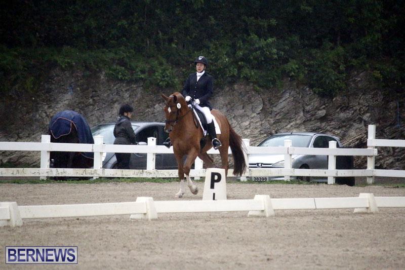 equestrian-6mar2015-6