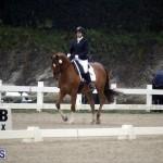 equestrian 6mar2015 (7)