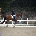 equestrian 6mar2015 (9)