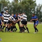 rugby 6mar2015 (4)
