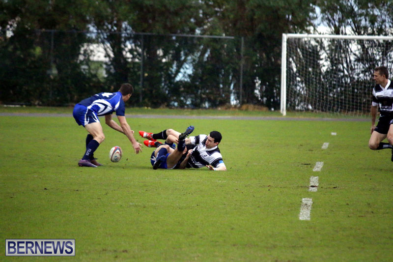 rugby-6mar2015-7
