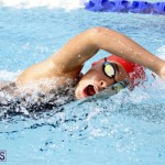 swimming 2015 March 26 (10)