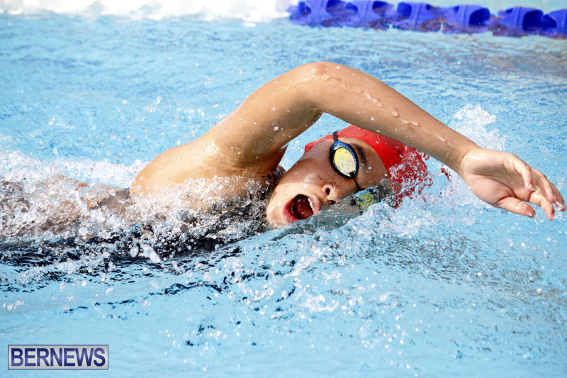 swimming-2015-March-26-10