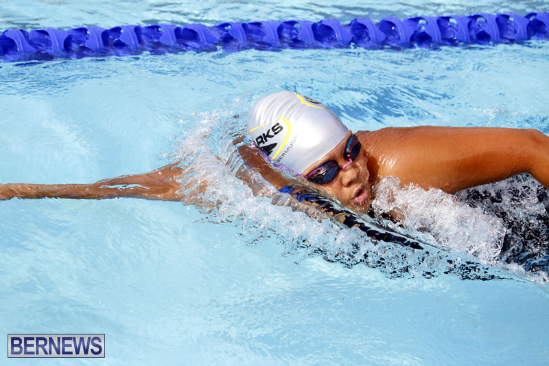 swimming-2015-March-26-11