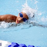 swimming 2015 March 26 (15)